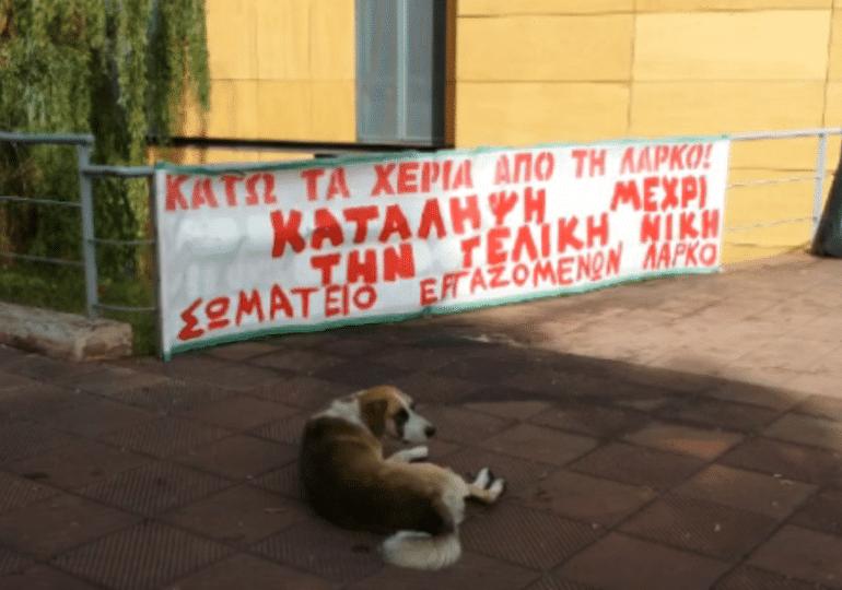 Κατάληψη στη ΛΑΡΚΟ: Όχι σε διαθεσιμότητες-απολύσεις