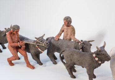 Άνθρωποι και ζώα