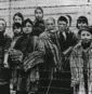 Ένωση Εβραίων της Γαλλίας για την Ειρήνη: Ένωση Εβραίων της Γαλλίας για την Ειρήνη: Να τιμήσουμε την μνήμη της απελευθέρωσης του Άουσβιτς αρνούμενοι το ρατσισμό και το φασισμό
