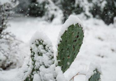Εκατομμύρια άνθρωποι στο Τέξας μέσα στο κρύο