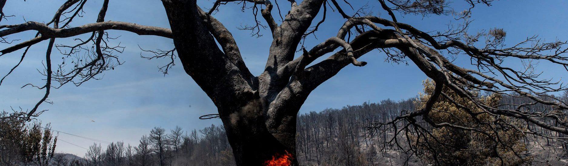 Πώς η κλιματική κρίση έβαλε φωτιά και στη... γειτονιά μας