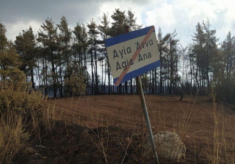 """Η Βόρεια Εύβοια μετά τις πυρκαγιές κινδυνεύει από τους """"Αναδόχους Αποκατάστασης"""""""